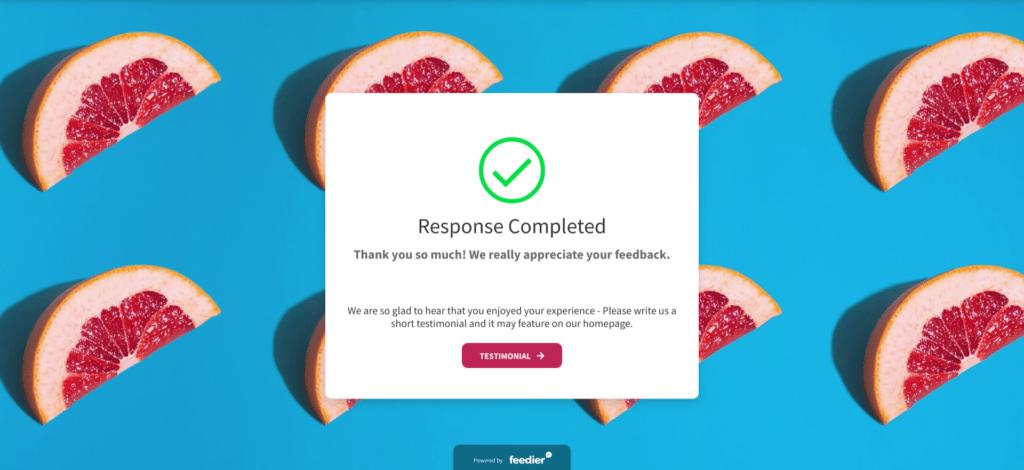 Formulaire de feedback utilisateur feedier