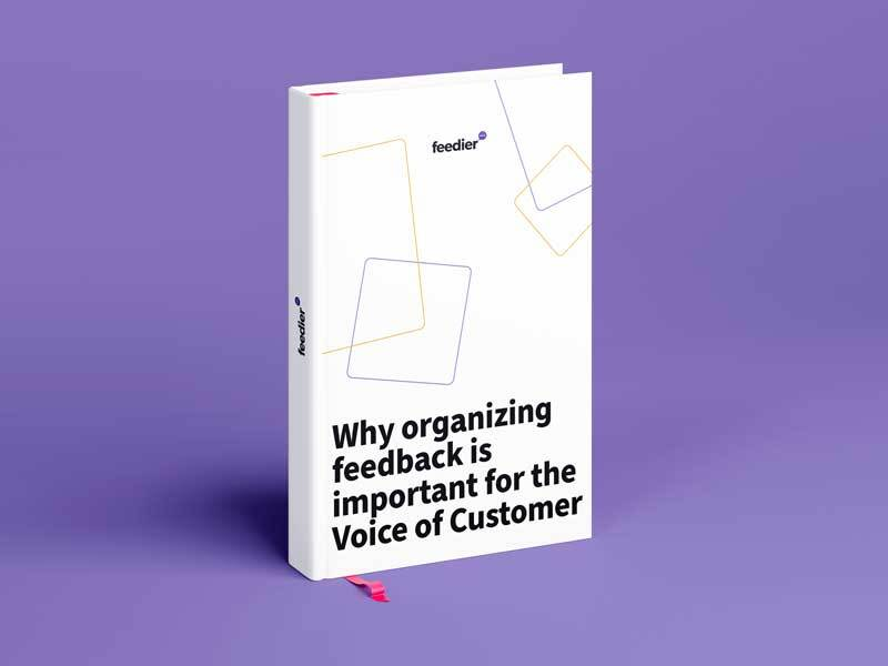 Why organizing feedback is important for the Voice of Customer